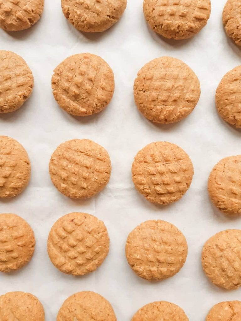 An overhead shot of peanut butter cookies arranged in rows