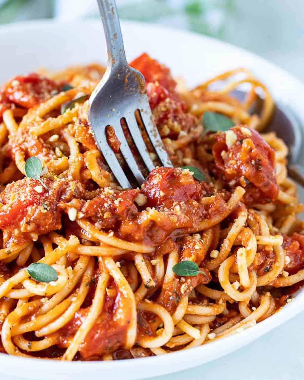 A plate of tomato sauce spaghetti with a fork.