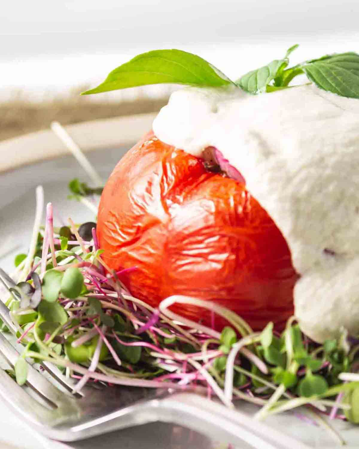 Close up of a stuffed tomato served on a bed of microgreens topped with cheese sauce.